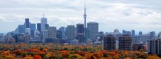 skyline-with-fall-colours1